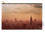 Tokyo And Mount Fuji Carry-all Pouch