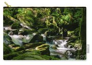 Torc Waterfalls Two Carry-all Pouch