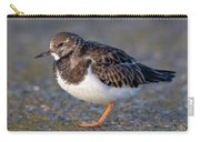 Turnstone Carry-all Pouch