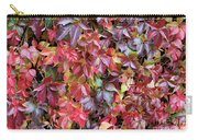 Virginia Creeper Wall Carry-all Pouch