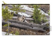 w75 Carry-all Pouch by Joshua Able's Wildlife