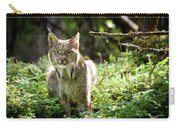 Watchful Mama Lynx Carry-all Pouch by Tim Newton
