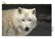 What's For Dinner? Carry-all Pouch by Susan Rissi Tregoning