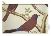 White Headed Munia, Double Coloured Seed Eater And Violet Eared Waxbill Carry-all Pouch