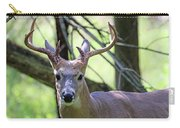 White Tailed Buck Portrait I Carry-all Pouch