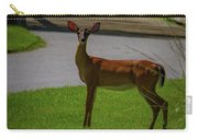 White Tailed Doe Carry-all Pouch