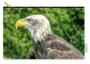 Wisconsin Bald Eagle Carry-all Pouch
