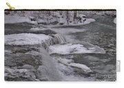 Wny Winter Wonderland Carry-all Pouch