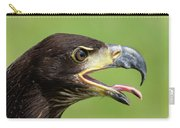 Young Bald Eagle 2 Carry-all Pouch