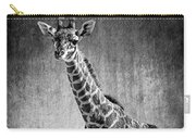 Young Giraffe Black And White Carry-all Pouch
