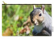 Your Friendly Neighborhood Squirrel Carry-all Pouch