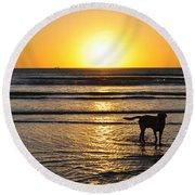 A Mans Best Friend Sunset Round Beach Towel