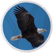 Bald Eagle In Flight 6 Round Beach Towel