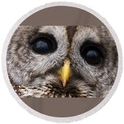 Barred Owl Eye's Round Beach Towel