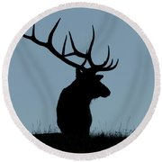 Bull Elk At First Light Round Beach Towel
