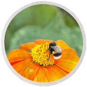 Bumble Bee 01 Round Beach Towel