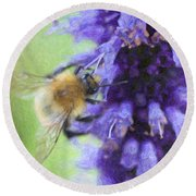 Bumblebee On Buddleja Round Beach Towel