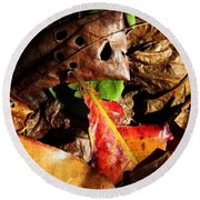 Colored Leaves Round Beach Towel