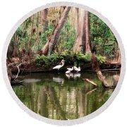 Cypress Swamp  Round Beach Towel