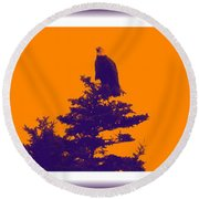 Eagle Scout At Sunset Round Beach Towel