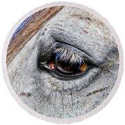 Eye Of A Horse Round Beach Towel