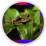 Frog Hideous Green Amphibian Round Beach Towel