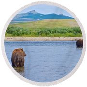 Grizzly Bears Looking At Each Other In Moraine River In Katmai Np-ak  Round Beach Towel
