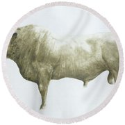 Islay Bull Round Beach Towel by Lincoln Seligman