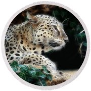 Leopard Watching It's Prey Round Beach Towel
