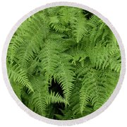 Mountain Ferns Of North Carolina Round Beach Towel