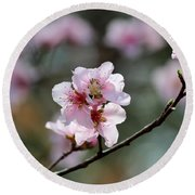 Peach Blossoms I Round Beach Towel