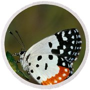 Red Pierrot Butterfly Round Beach Towel