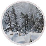 San Jacinto Winter Wilderness Portrait Round Beach Towel