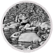 Tohickon Creek Round Beach Towel