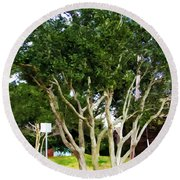Trees In A Suburban Neighborhood In Summer Round Beach Towel
