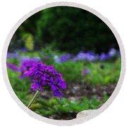 Violet Flower Round Beach Towel