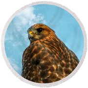 What Are You Looking At Red Shoulder Hawk Round Beach Towel