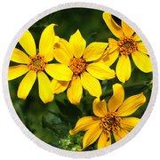 Yellow Texas Wildflowers Round Beach Towel