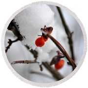 001 Frozen Berries Round Beach Towel