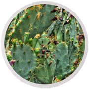 002 For The Cactus Lover In You Buffalo Botanical Gardens Series Round Beach Towel