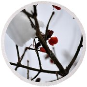 002 Frozen Berries Round Beach Towel