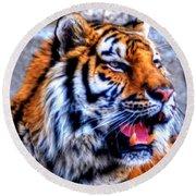 002 Siberian Tiger Round Beach Towel