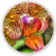 004 Orchid Summer Show Buffalo Botanical Gardens Series Round Beach Towel