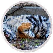 009 Siberian Tiger Wubb Me Bellwee Poweesh Round Beach Towel