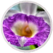00b Buffalo Botanical Gardens Series Round Beach Towel