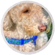 02 Portriat Of Wizard   Pet Series Round Beach Towel