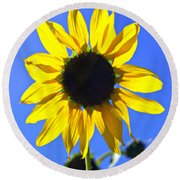072 Round Beach Towel by Marty Koch