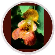 Spotted Jewelweed Round Beach Towel