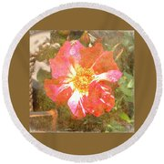 4th Of July Rose Round Beach Towel