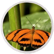 A Banded Orange Heliconian Butterfly Round Beach Towel